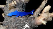 Flaschenöffner Fisch  Blau