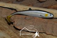 Jackson Baitfish Silver Bleak 12cm