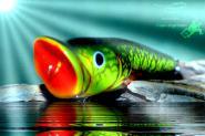 Salmo Pop 6cm 7g Floating - Baby Bass Hafenangelei Stralsund Rügen Seen Lindau Bodensee Schweden...