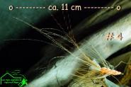 Turrall  Pattegrisen Sea Trout  # 4 - Handgebunden - Seeforellen Meerforellen Bodensee - rügen